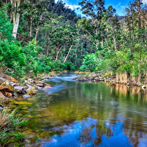 Aberfeldy River, Baw Baw National Park, Australia