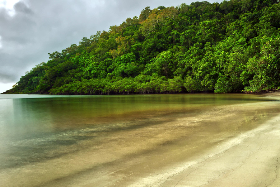 Rainforest meets the sea at Cape Tribulation