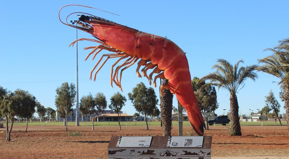 Exmouth's giant prawn, Australia @opheliacompass29