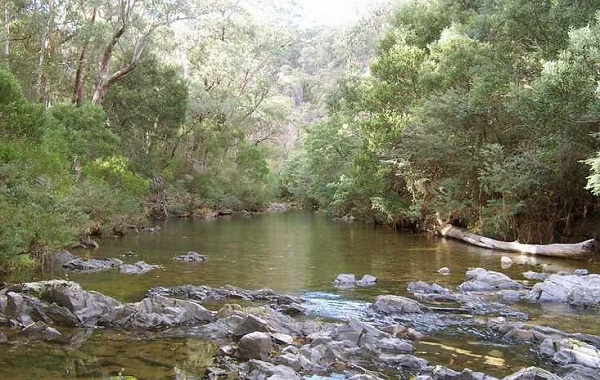Aberfeldy River Camping Area, Baw Baw National Park, Australia @HemaX Planner