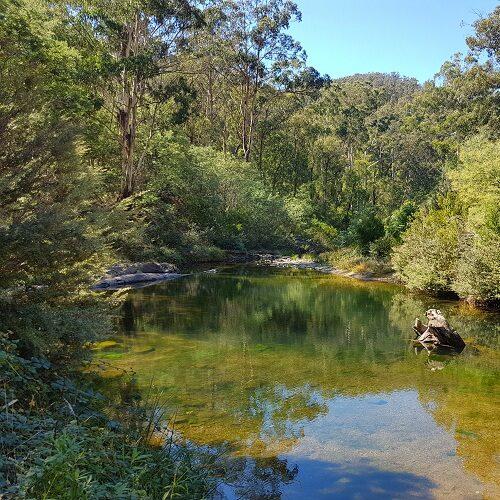 Aberfeldy River, Baw Baw National Park,Australia @Wikimedia Commons