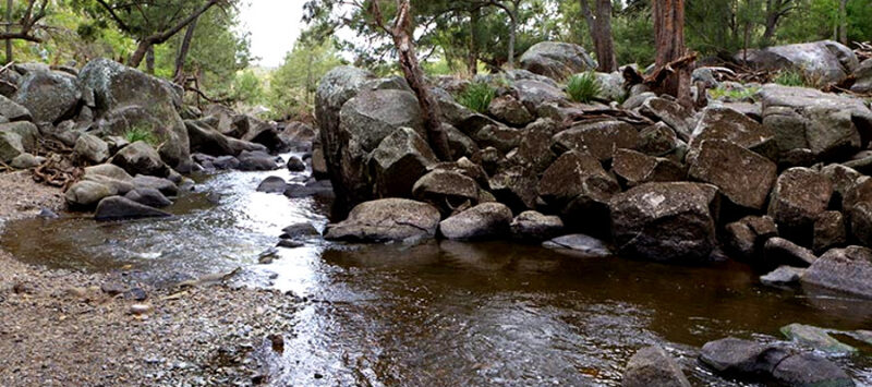 Halls Peak campground and picnic area,Australia @Rob Cleary