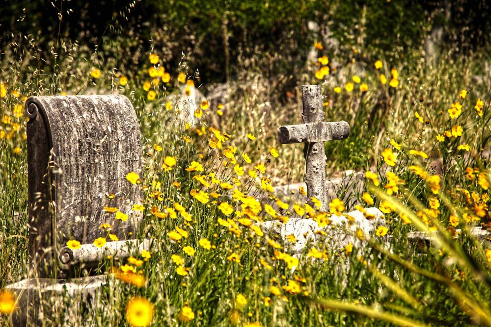 Gore Hill Cemetery,Australia